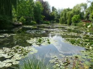 24_Le jardin d'eau8