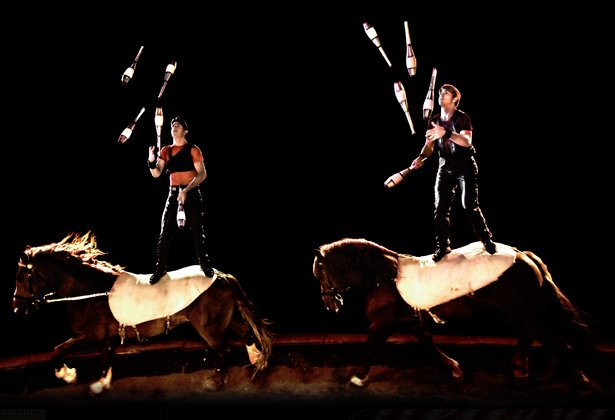 Spectacle melody cirque alexis gruss jongleurs amicale - Image jongleur cirque ...